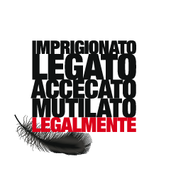 Call to action 1 Immagine