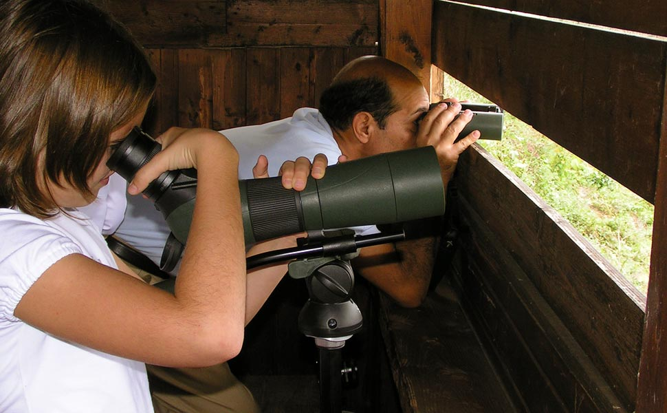 Birdwatching in capanno (foto: A. Mazza)