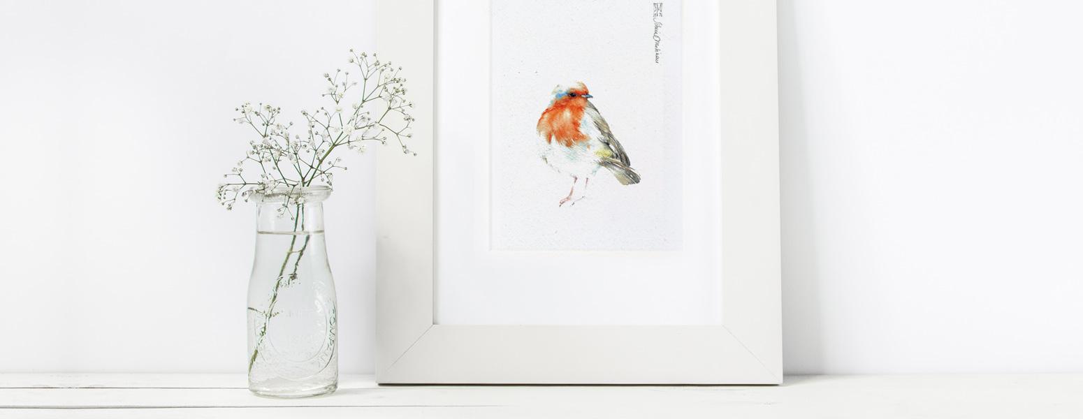 Proteggi le piante, gli uccelli, la biodiversità